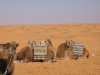 Vacances Tunisie_12_2008 001