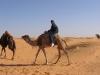 Vacances Tunisie_12_2008 016